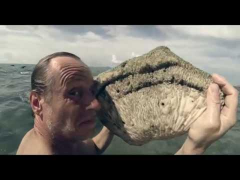 Trailer de Family Film Rodinny film (HD)
