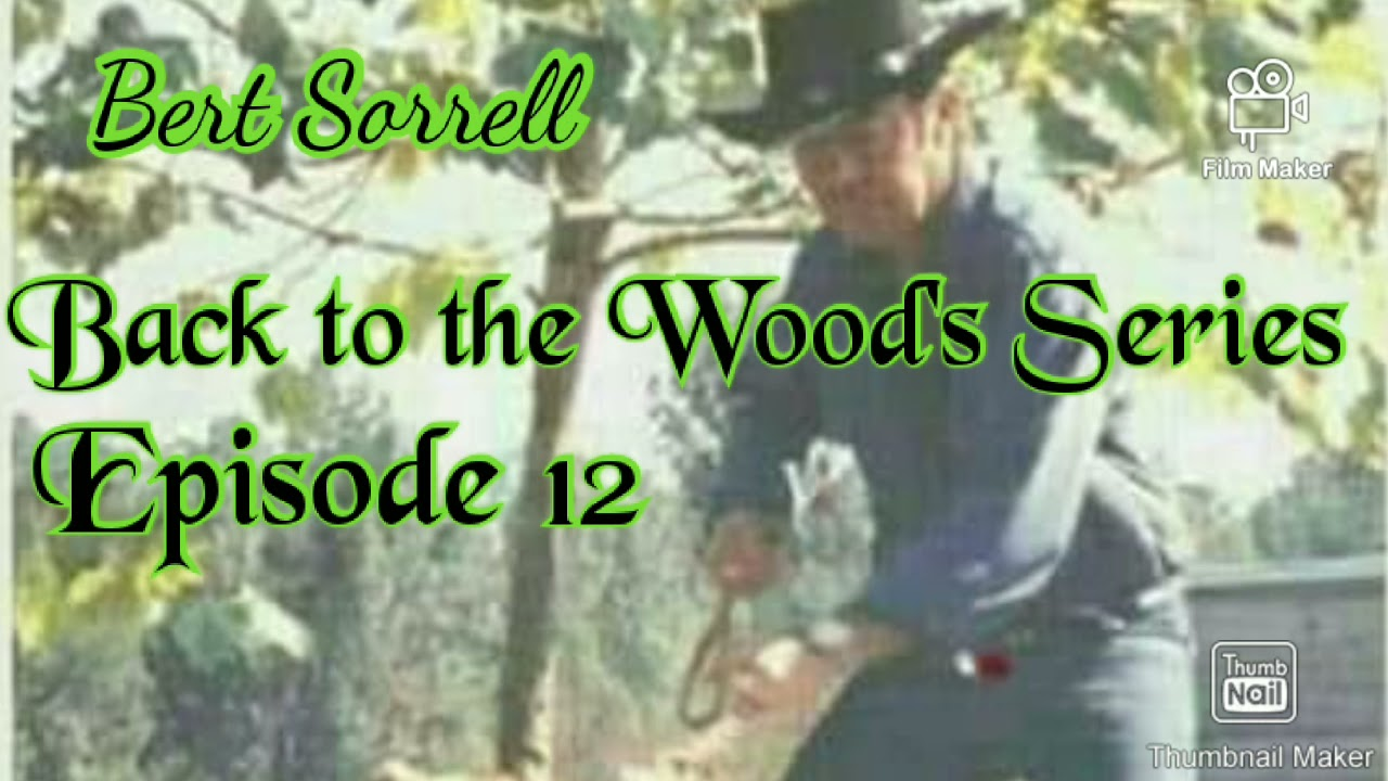 """Download """"Bert Sorrell"""" Back to the Wood's Series Episode 12 #apbt##love your dogs#"""