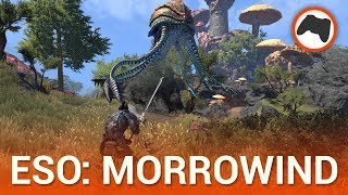 The Elder Scrolls Online: Morrowind, recensione in italiano
