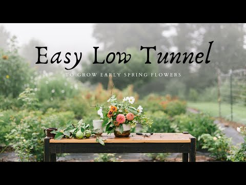 How To Build An EASY Low Tunnel  |  Grow Ranunculus  |  Small Scale Flower Farming