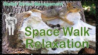 STGEC & CTRC: SpaceWalk Relaxation (2016)