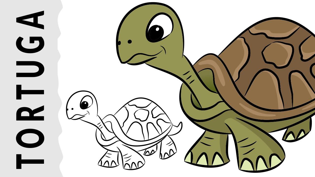 Cómo dibujar una Tortuga paso a paso con dibujart.com - YouTube