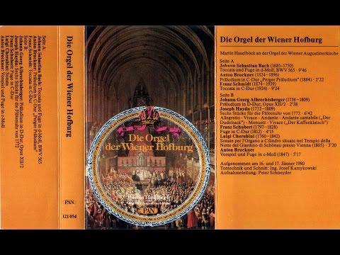 Martin Haselböck an der Orgel der Wiener Augustinerkirche
