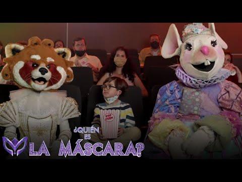 ¡Descubre quién esta detrás de Mapache y Ratón! | Inicio 11 de octubre | ¿Quién es La Máscara? 2020