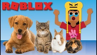 I CAN SAVE THEM ALL | ROBLOX VET SIMULATOR GAMEPLAY