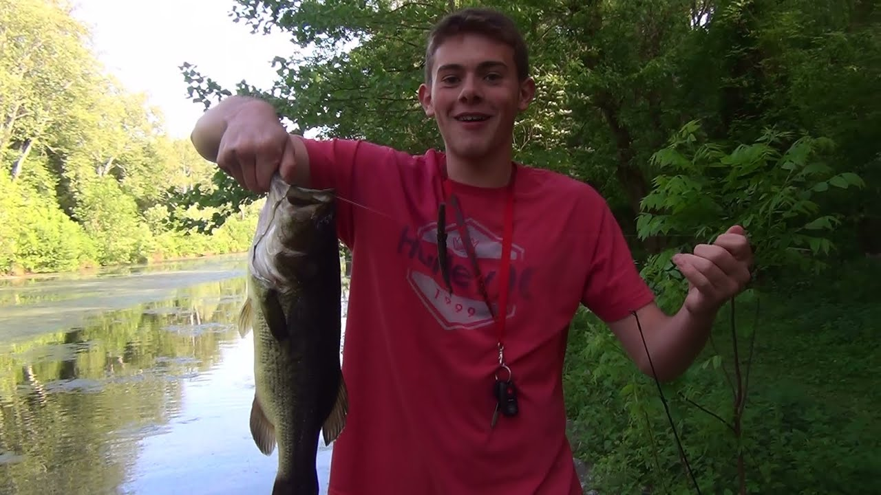 Largemouth bass pond fishing pennsylvania 2015 youtube for Buy bass fish for pond