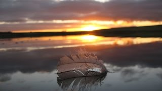 Ulf Puhls - Feather On The Surface (Piano In July) mp3