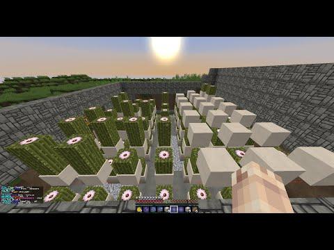 how to build a cactus farm in minecraft saicopvp