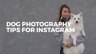 How to take the BEST DOG PHOTOS for Instagram   Easy Photography Tips