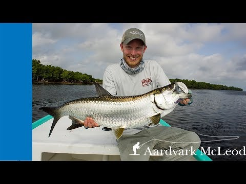 Fly Fishing For Tarpon In The Yucatan In Mexico