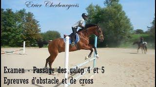 EXAMEN - PASSAGE DES GALOPS 4 ET 5 - épreuves d'obstacle et de cross - Etrier Cherbourgeois