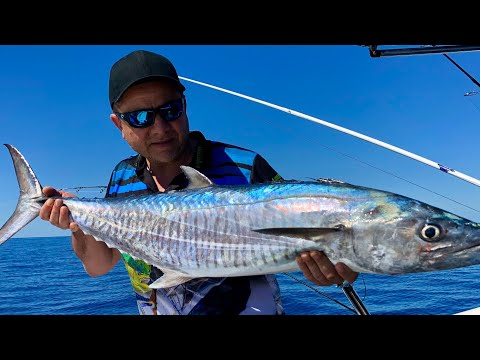 The Craziest Fishing Trip Out Of Port Douglas On The Great Barrier Reef 2019 Part 2