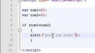 Javascript Tutorial - 8 - If Statement