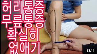 허리통증 무릎통증 제거법(퇴행성관절염 류마티스관절염 허…