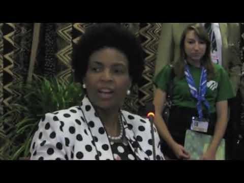 YOUNGO Briefing with COP 17 President Maite Nkoana-Mashabane