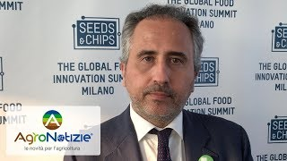 Seeds&Chips 2019, sempre più internazionale