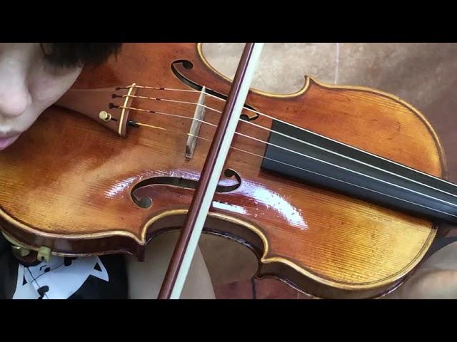 Ifstrings Master Build deluxe Wood #368 Guarneri del Gesu 1743