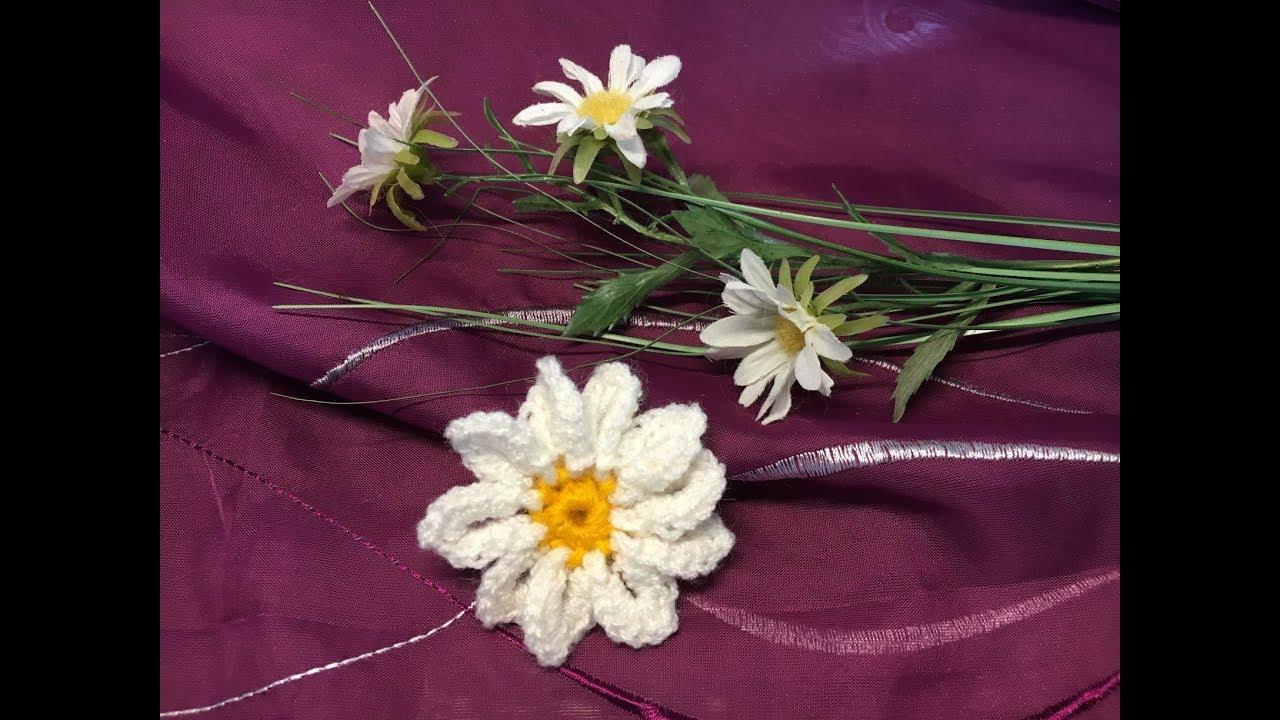 Margerite Häkeln Blüte Absolut Einfach