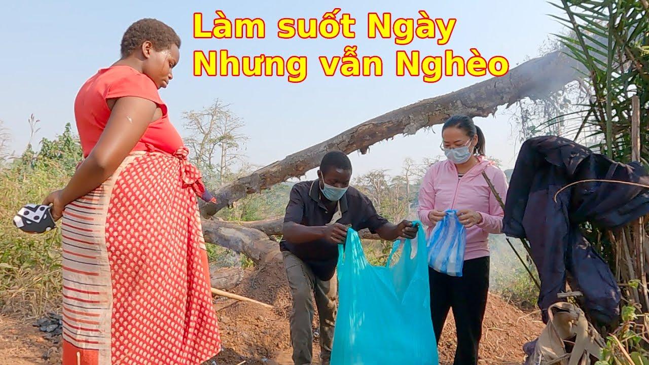 Giúp vợ chồng anh bán than một chút hạt giống||Ahihi cuộc sống châu Phi