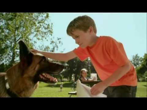 charles-wyson---burger-king-cats-&-dogs-toys-commercial-(2010)