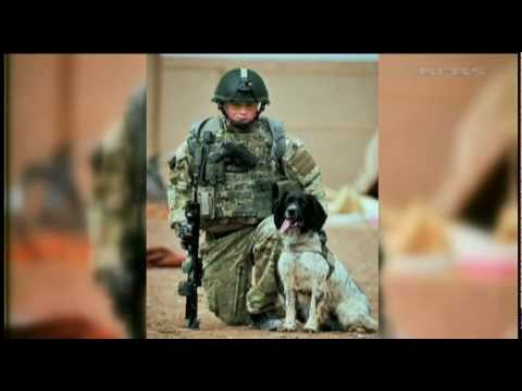 Verdict of unlawful killing on Army dog handler shot dead in Afghanistan 13.07.11