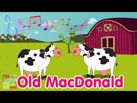 Old MacDonald Had A Farm | Nursery Rhyme | Lagu Anak Channel