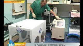 Современное оборудование для лечения животных закупают в регионе