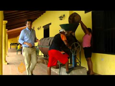 Venezuela's chocolate dreams melting away