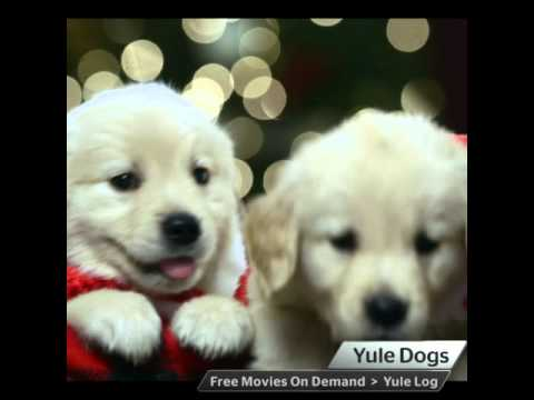 Time Warner Cable Brings Back the Yule Log and Introduces New Free Holiday On Demand Content ...