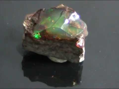 The most rare opal on the planet (with plants and golden platelet) 11.5 carat