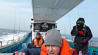 Эпизод с рыбалки в Сокчхо, Ю.Корея...
