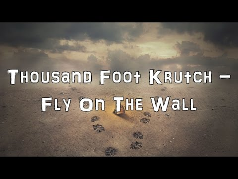 Thousand Foot Krutch - Fly On The Wall [Acoustic Cover.Lyrics.Karaoke]