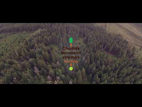 Ako sme stavali Chodník korunami stromov v Bachledke / Building of Treetop walk in Bachledka