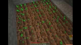 Игра в Minecraft:часть2-огород
