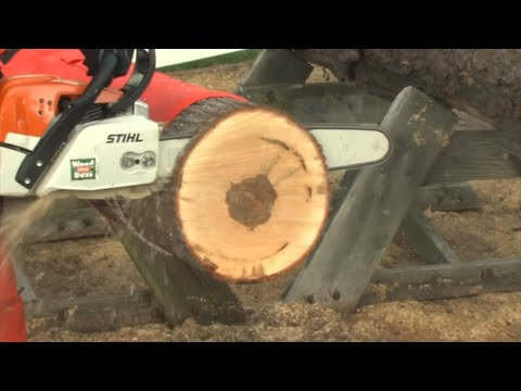 Demonstration Of STIHL Chainsaw Protective Chaps