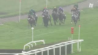 Vidéo de la course PMU PRIX MARCEL MICHEL - GRAND STEEPLE CHASE DE STRASBOURG