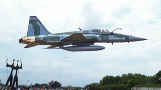 Fighter Jet Low Pass F-5EM Plane Flying Very Low and Very Fast