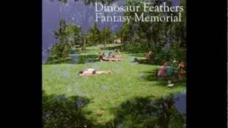 Dinosaur Feathers - Vendela Vida