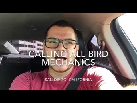 If you're a Bird mechanic in San Diego, let's meet up and talk! -  RideIntoCash
