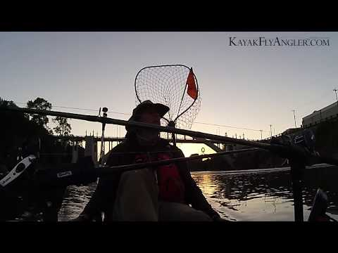 Fly Fishing For Shad In The Kayak Near Willamette Falls