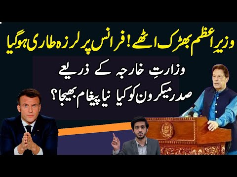 PM Imran Khan Message to France Macron as TLP Workers Go on With Saad Rizvi|Makhdoom Shahab ud din