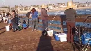 Imperial Beach Pier fishing San Diego,CA.