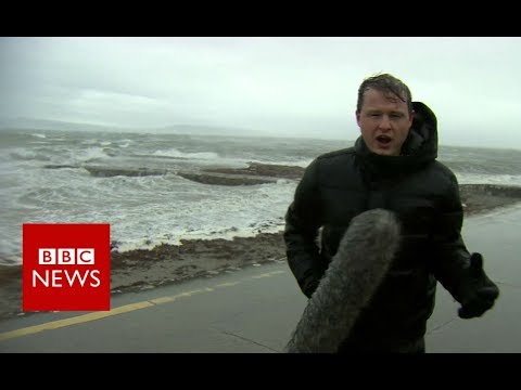 Hurricane Ophelia: Three people die as storm hits Ireland – BBC News