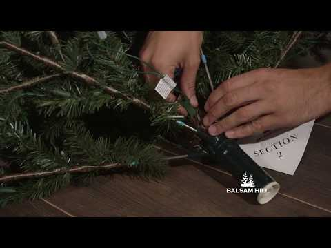 Section 2 of a 3-Section Easy Plug™ Tree Does Not Light Up