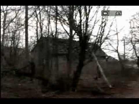 Land of the Wolves Elena Filatova
