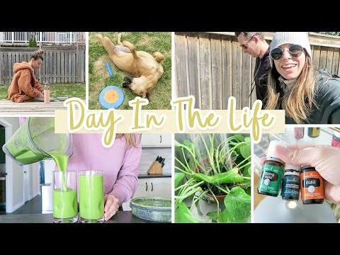 day-in-the-life-vlog-|-keeping-calm-at-home-+-cooking,-cleaning,-planting-&-more!