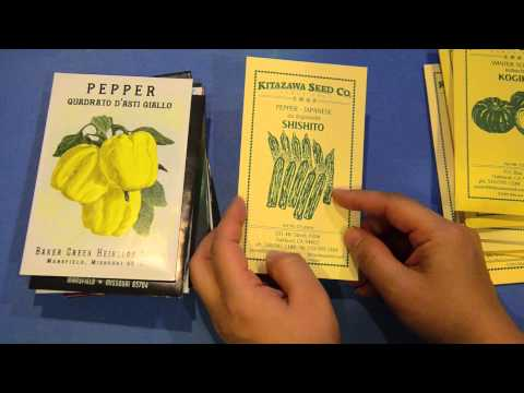 Seed share - new and old seeds!