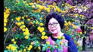 전주 완산공원 철쭉제 동영상 완성 2