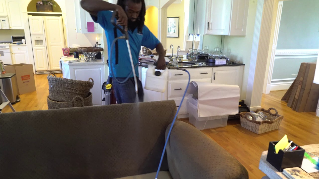 Virginia Beach Upholstery And Rug Cleaning Youtube