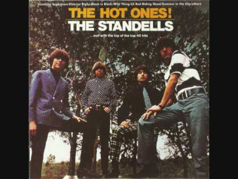 THE STANDELLS  - Wild Thing